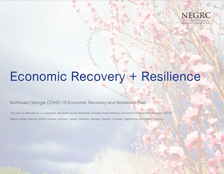 Northeast Georgia Economic Recovery + Resilience Plan